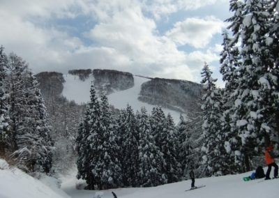 ski-40-1024x683
