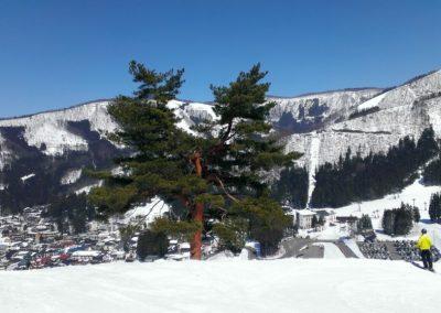 ski_34-1024x577